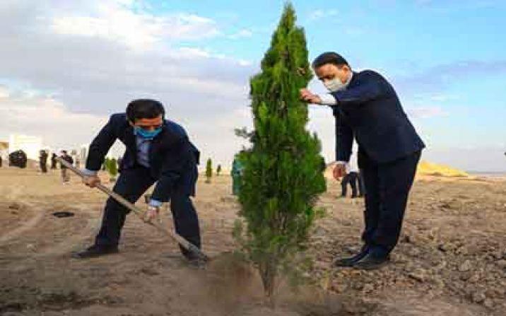 غرس نهال به یاد 6090 شهید استان قم