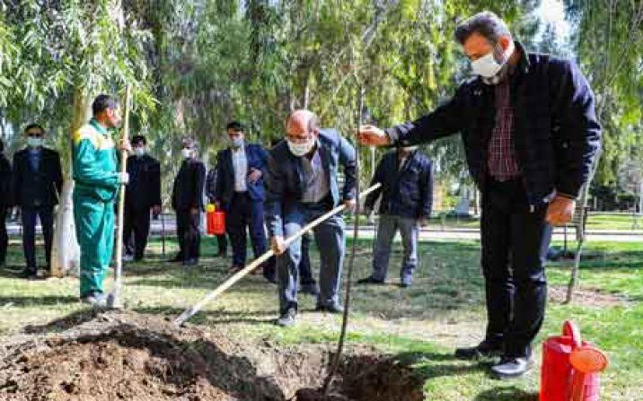 اعضای شورای اطلاعرسانی استان قم درخت کاشتند
